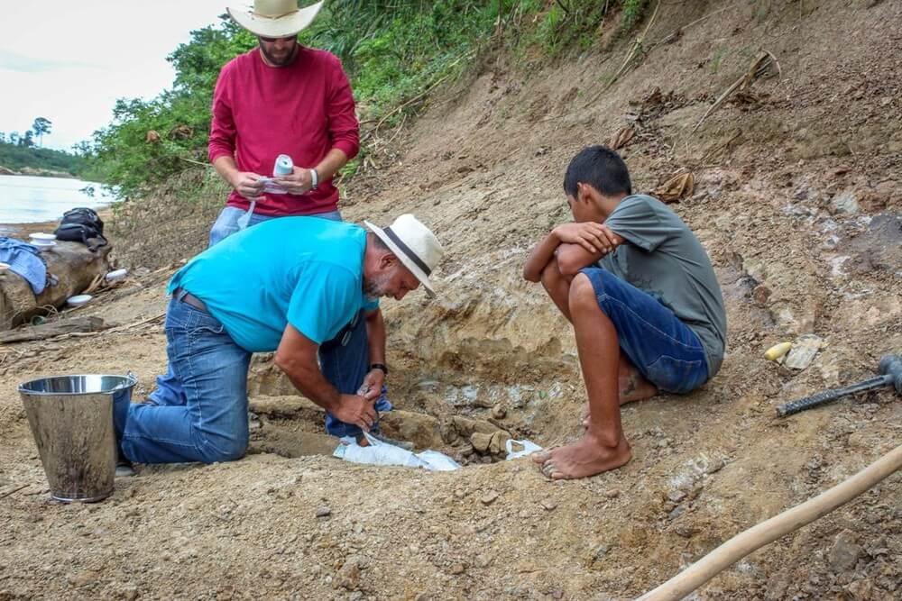 acre - menino acha fóssil de réptil de 8 milhões de anos