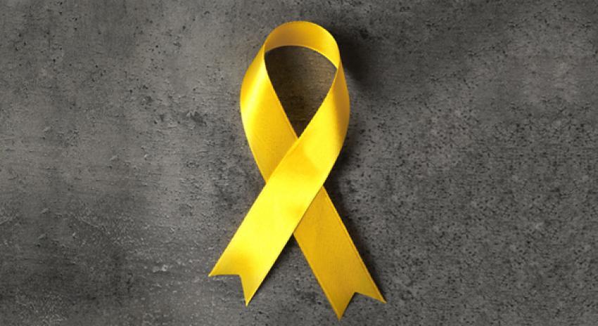 curso de prevenção ao suicídio capacita profissionais de curitiba