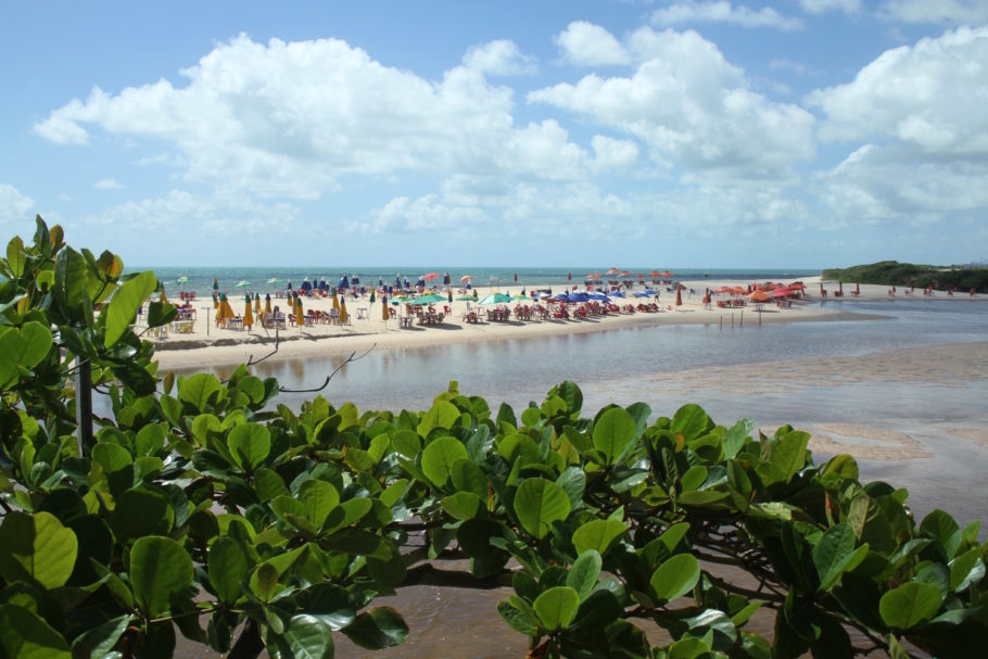 conheça a intocada praia de pitimbu, na paraíba