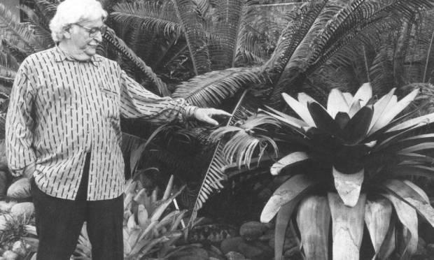 sítio-burle-marx-se-torna-patrimônio-cultural-do-rio-de-janeiro